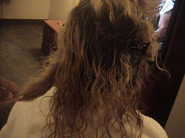 Severely Tangled Matted Hair Train Work Program Detangle