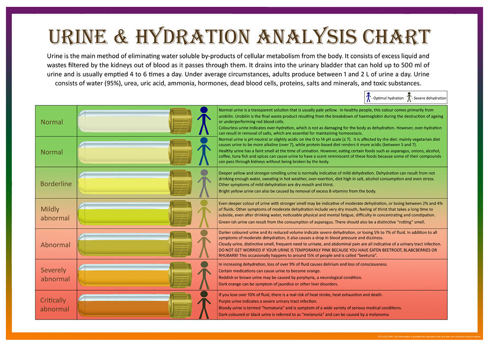 Urine Amp Hydration Analysis Chart Amp Bristol Stool Form