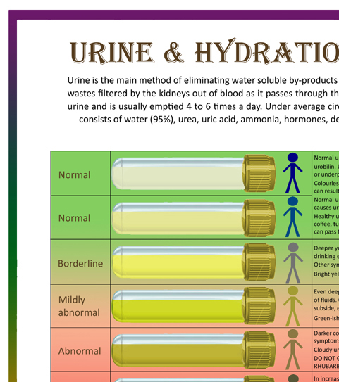 Urine Amp Hydration Analysis Chart Amp Bristol Stool Form