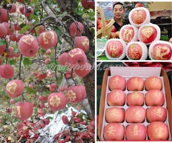 Moldes de frutas e adesivos Word-mark-apple-for-sale