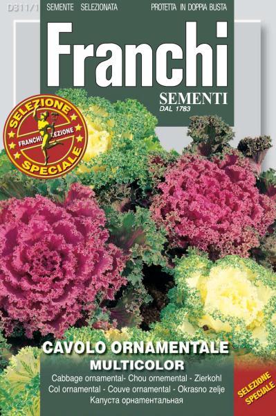 Cavolo ornamentale ornamental cabbage for Cavolo ornamentale