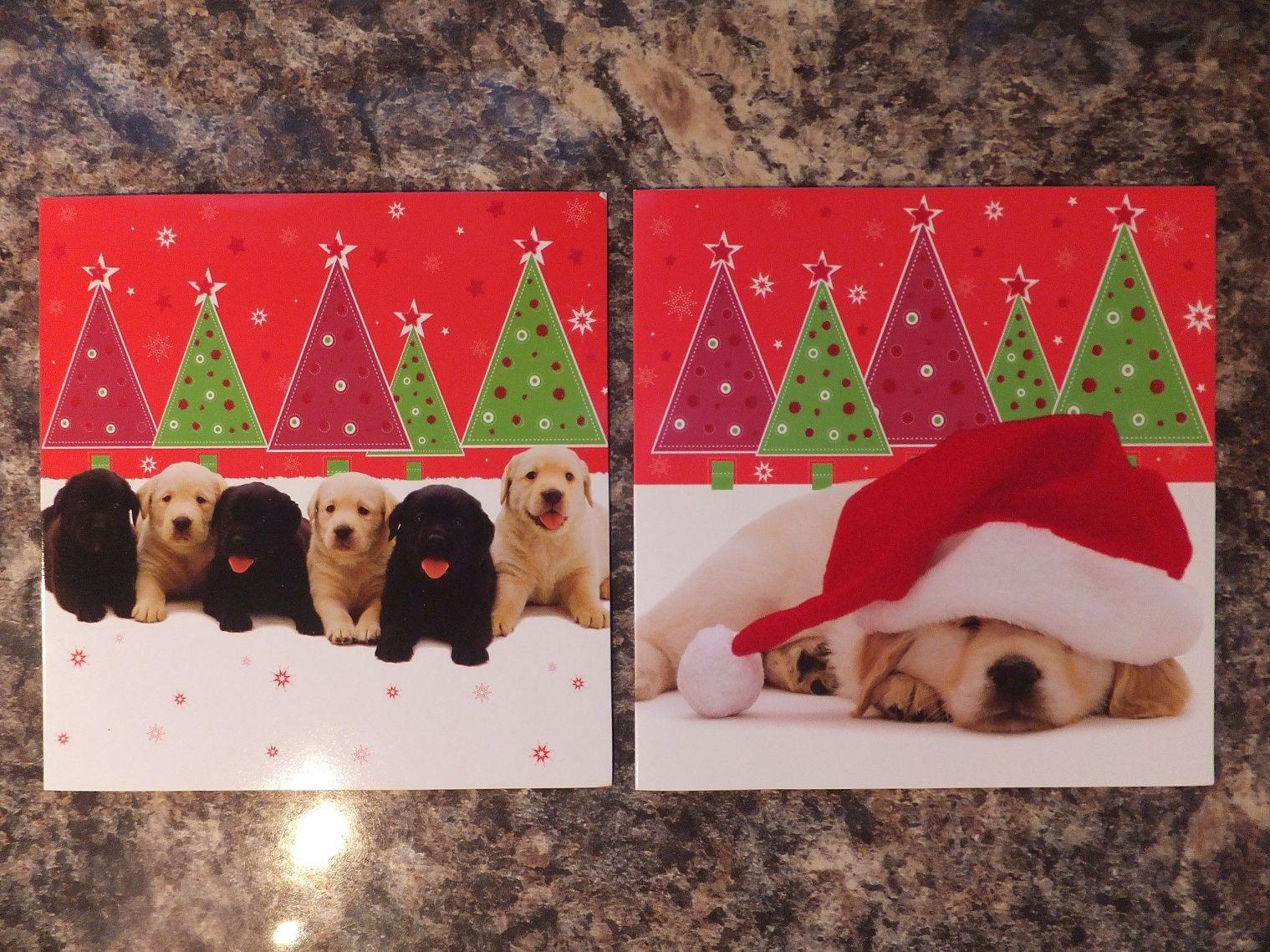 LABRADOR PUPPIES LUXURY CHRISTMAS CARDS PK 10