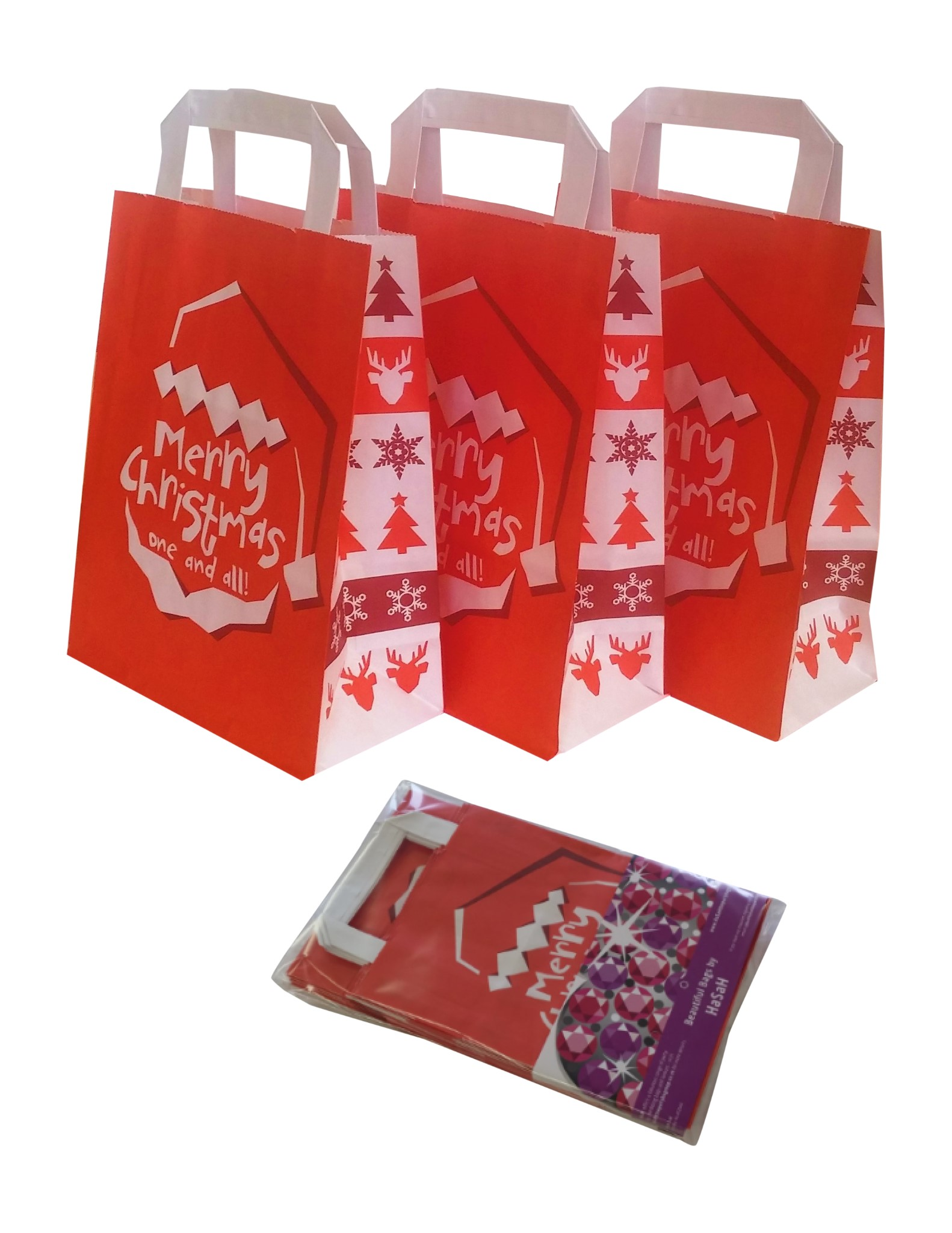 Christmas Paper Gift Party Goody Bags With Handles 10 Pack