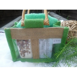 My Green Gift Bag 2