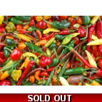 Fresh Chillies 1kg Details