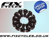 Black - M5 x 10mm Titanium Disc Rotor bolts