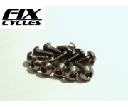 M5 x 10mm Titanium Disc Rotor bolts