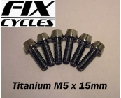 Titanium Ti M5 x 15 mm Taper Head Bolt