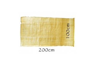 Huge papyrus 2m by 1m natural edges