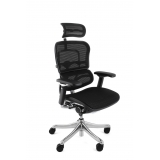 Ergohuman Plus Mesh office chair with ..