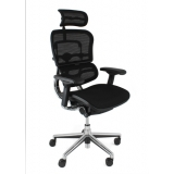 Ergohuman Mesh office chair with headr..
