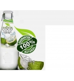 COCO Natura Coconut Water - Glass Bottles 300ml