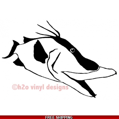 Hogfish - Vinyl Sticker
