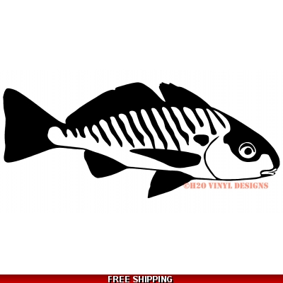 Croaker Mazuki - Vinyl Sticker