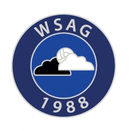 WSAG Pin Badge