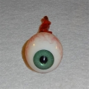 Removed Eyeball