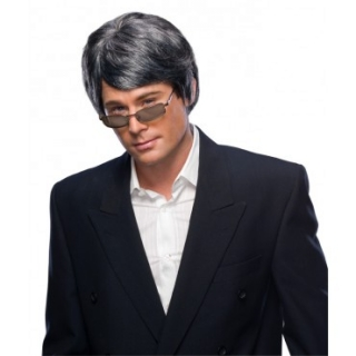 Men's Grey Character Wig