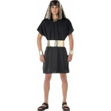 Pharaoh Adult Tunic Costume