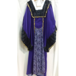 Adult King Henry's Lady Large Costume
