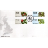 FS18b Winter Greenery Bureau Pack FDC