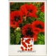 3711mx6 Poppy maximum card.