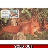 3778x2 Red Squirrel Maximum Card