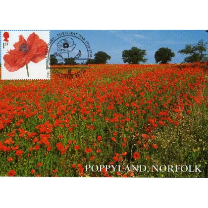 3626x3 Poppyland Norfolk  Maximum Card 2014
