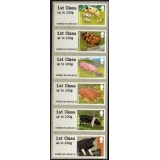 FS07h Pigs Faststamps set of 6 x 1st f..