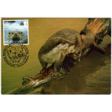 3061b Wildlife, Otter, maximum card