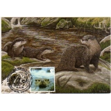 3061a Wildlife, Otter, maximum card