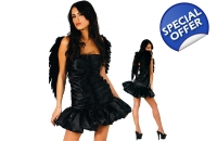 Dark Angel Fancy Dress ..