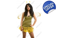 Bee Fancy Dress