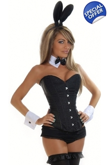 Seductive Playboy Bunny Fancy Dress Costume