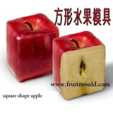 square apple mold