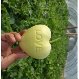 Heart apple mold with