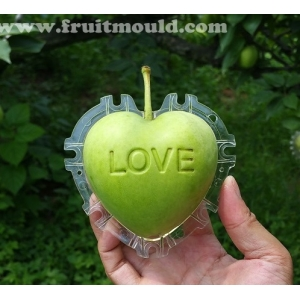 "Heart apple mold with ""love"""