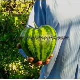heart shape watermelon on sale