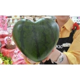 heart watermelon molds or container
