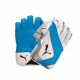 Puma evoPower 3 Wicket Keeping Glo..