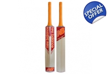 TC 360 Cricket Bat