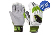 evoPower 1 Batting Gloves