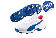 Team Full Spike Cricket Shoes