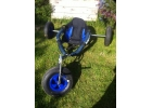 Used Radsails Buggy