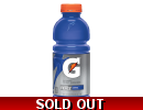 Gatorade Fierce Grape 591ml Bottle Ame..