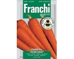 CARROT CHANTENAY SAVE 40p