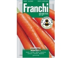 CARROT NANTESE OF CHIOGGIA