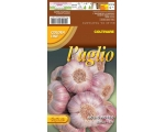 FRENCH RED GARLIC ** Pre-order now for Autumn d..