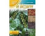LE BIZZARRE - ARABICA COFFEE