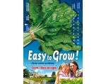 EASY GREEN SWISS CHARD