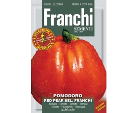 TOMATO RED PEAR FRANCHI OF BERGAMO